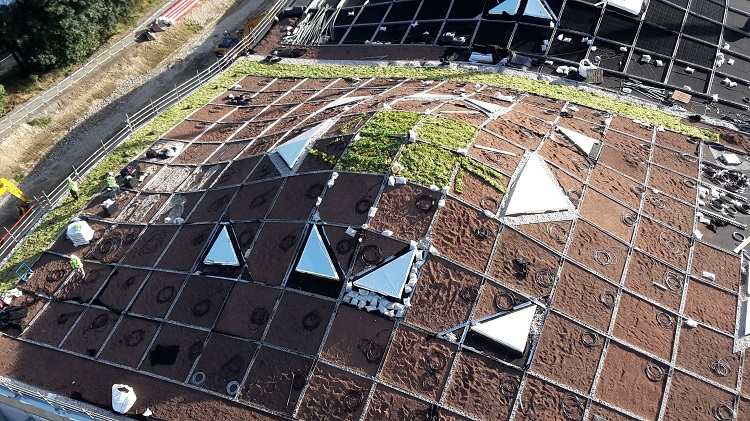 Green Roof Award Macallan Distillery Extension
