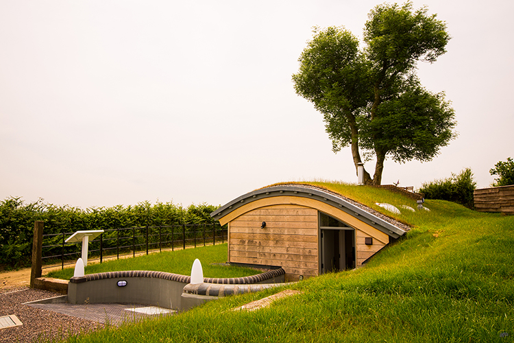 Green Roofing World War II Bunker